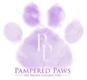 Pampered Paws Amend 2 Blog Friendly